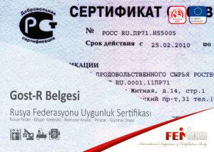 Gost R Belgesi Rusya Sertifikası